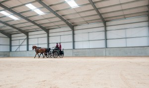 equine-photography-beechwood- equestrian-centre-jumping-dressage-carriage-driving-122